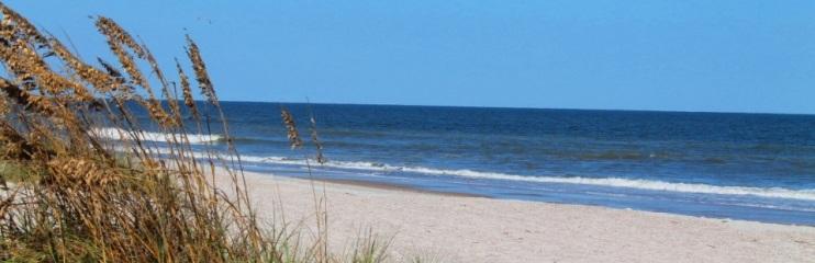 Amelia Island, FL #4536