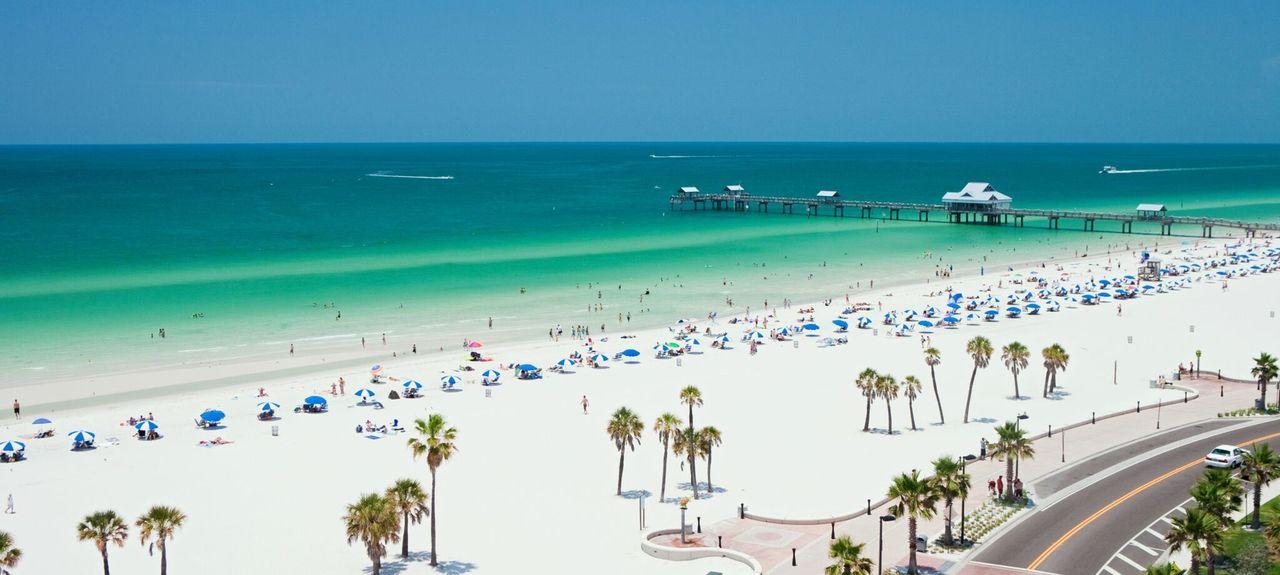 Clearwater/St. Petersburg, FL #4577