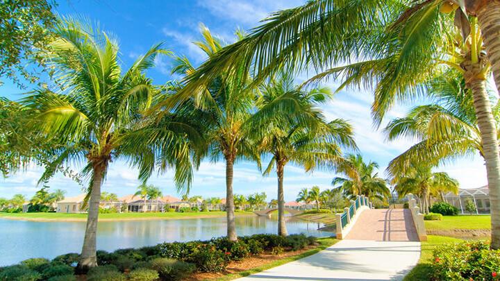 Brevard County, FL #4637