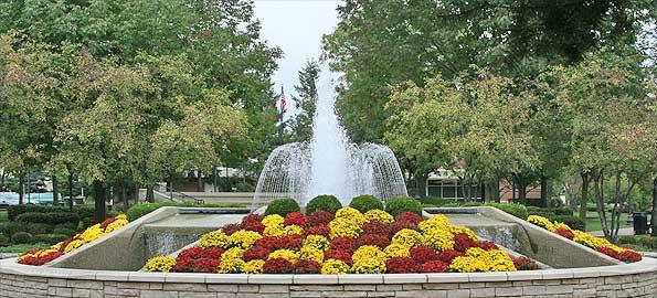 Arlington Heights, IL #4720