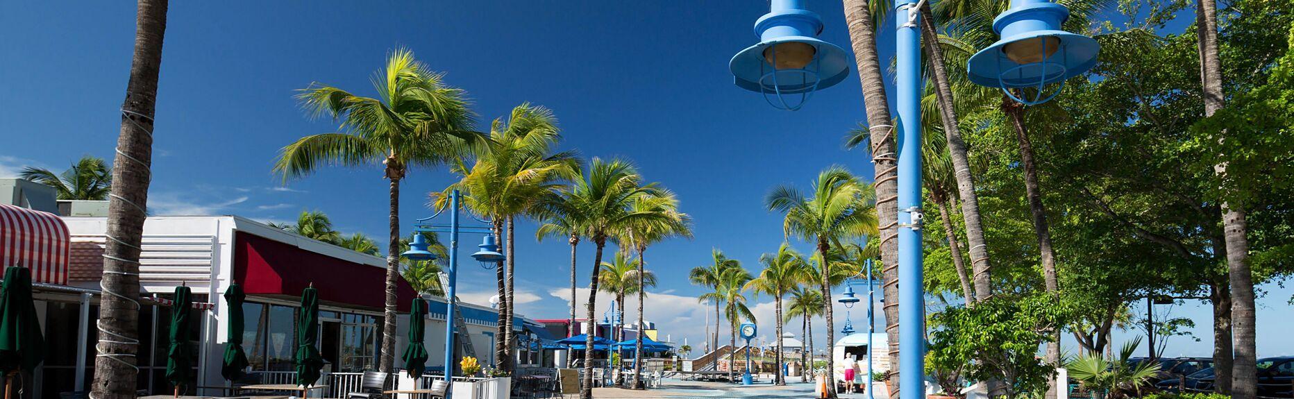 Southwest Florida #4741